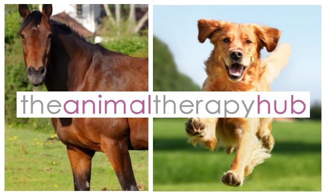 The Animal Therapy Hub Image