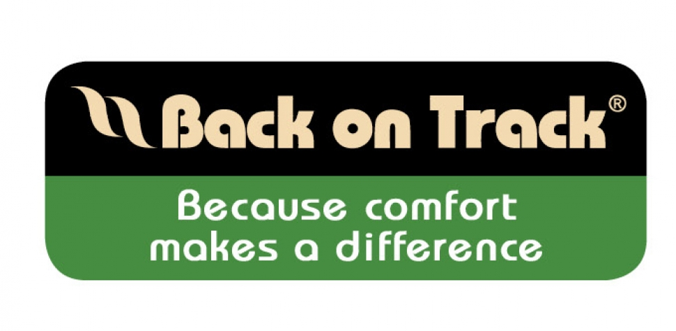 Back on Track Logo