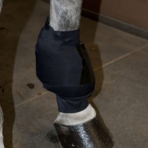 Ice Horse Emergency Wrap Fitting