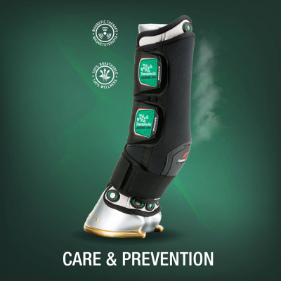 Care and Prevention