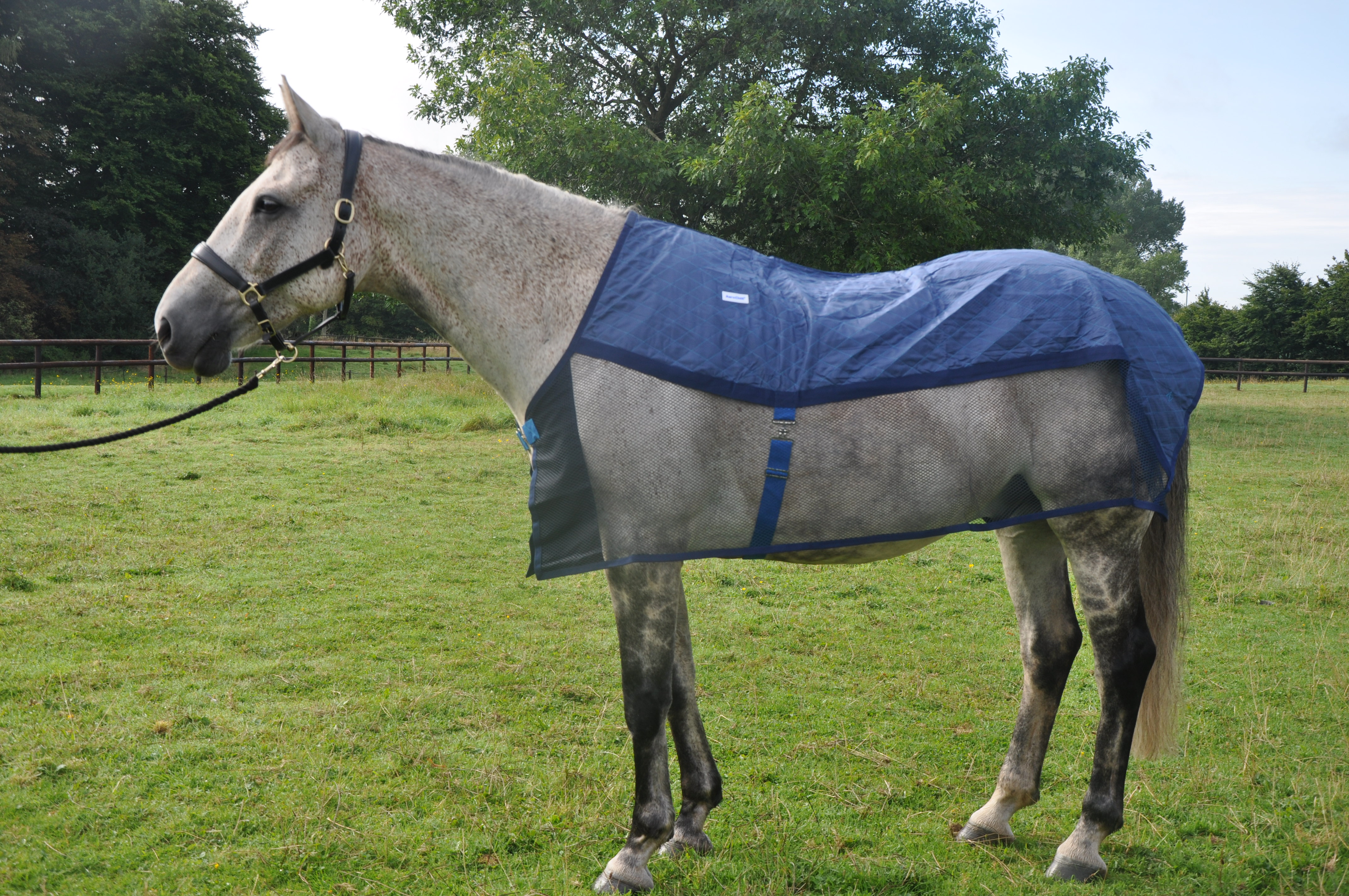 AeroChill Cooling Rug for Horses (Ideal