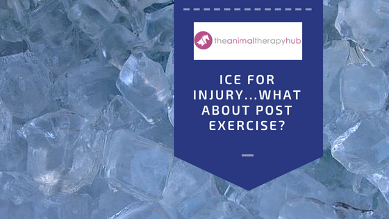 Ice for Injury and Exercise