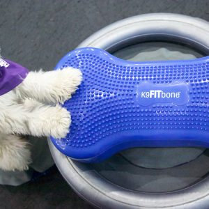 FitPAWS K9FITBone Holder