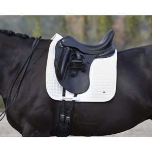 Dressage No 1 Fitting White